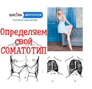 Соматотип
