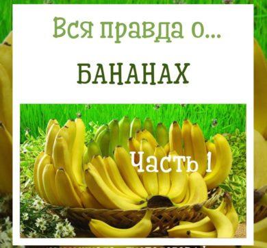 Польза бананов для здоровья. Факты и исследования