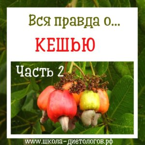 польза ореха кешью для организма