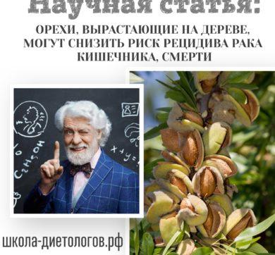 Орехи, вырастающие на дереве, могут снизить риск рецидива рака кишечника, смерти