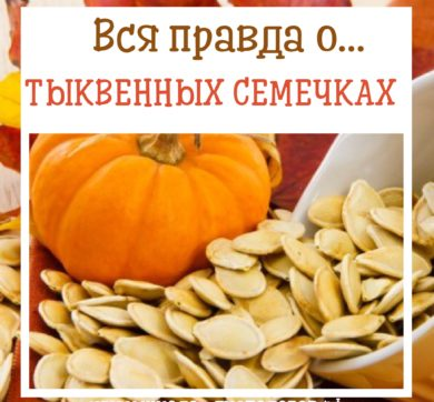 Тыквенные семечки: польза для здоровья человека, пищевая информация